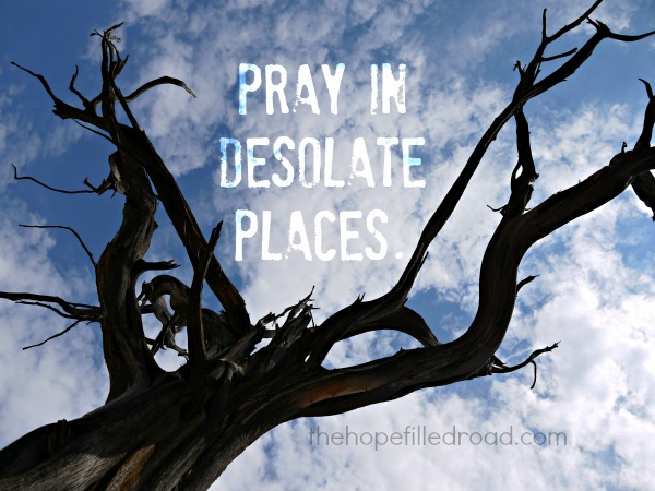 pray-in-desolate-places